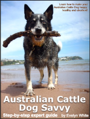 australian cattle dog ebook Customer Reviews